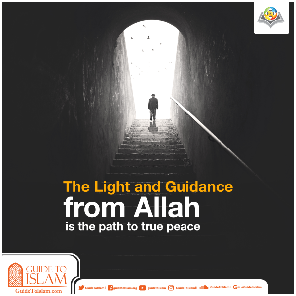 The Light and Guidance from Allah