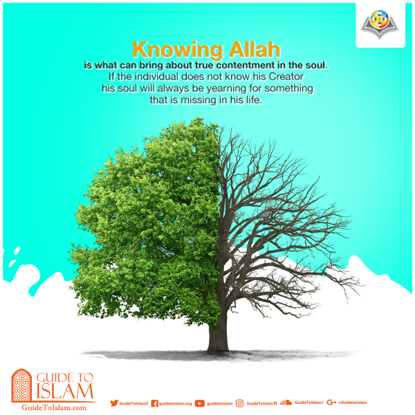 ​Knowing Allah