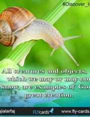 All creatures and objects, which we may or may not know, are examples of God's great creation.