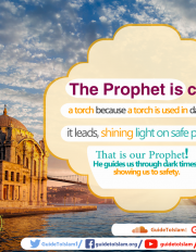 The Prophet is called a torch because a torch is used in darkness; it leads, shining light on safe passage