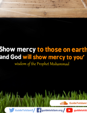 wisdom of the Prophet Muhammad