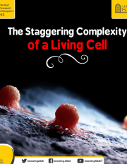 The Staggering Complexity of a Living Cell