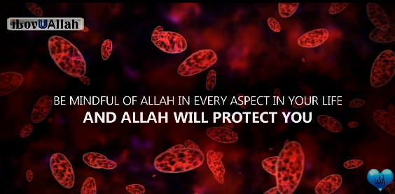 Duas and protection from any Disease