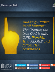 Allah's guidance to all humans
