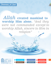 Allah created mankind to worship Him alone