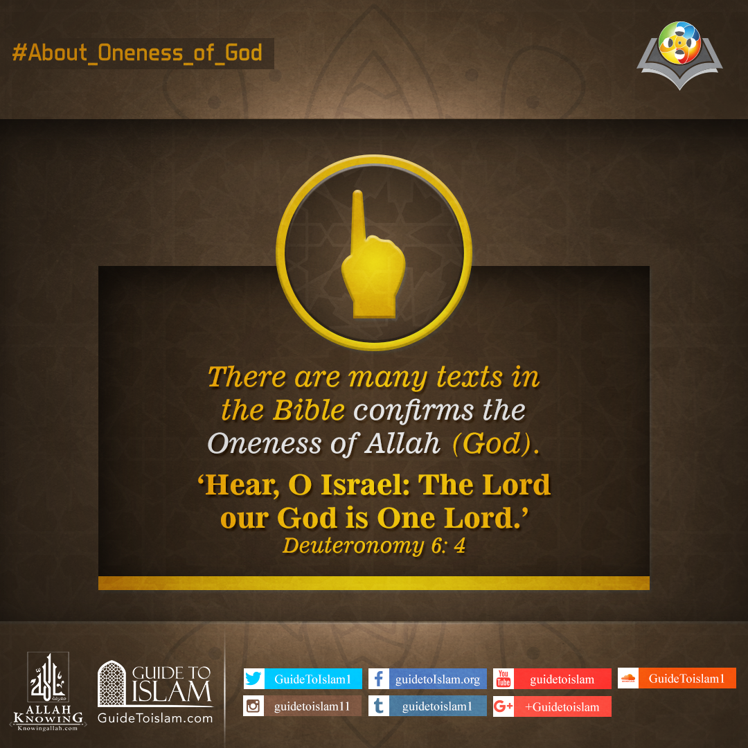 There are many texts in the Bible confirms the Oneness of Allah (God)