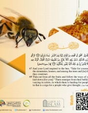 "And your Lord inspired to the bee, ""Take for yourself among the mountains, houses, and among the trees and [in] that which they construct."