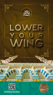 Lower your Wing