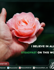 Say I believe in Allah then steadfast on this word