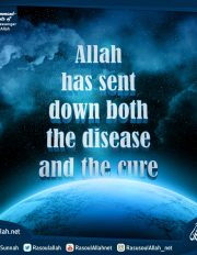 Allah has sent down both the disease and the cure