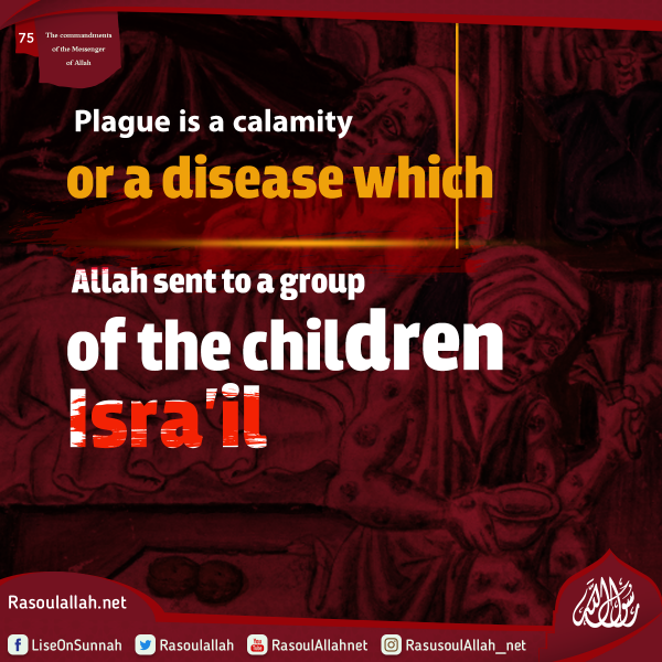 Plague is a calamity or a disease which Allah sent to a group of the children Isra'il