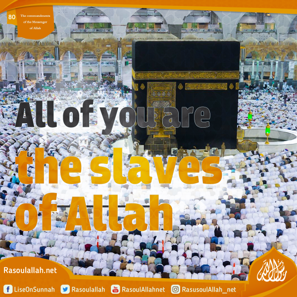 All of you are the slaves of Allah