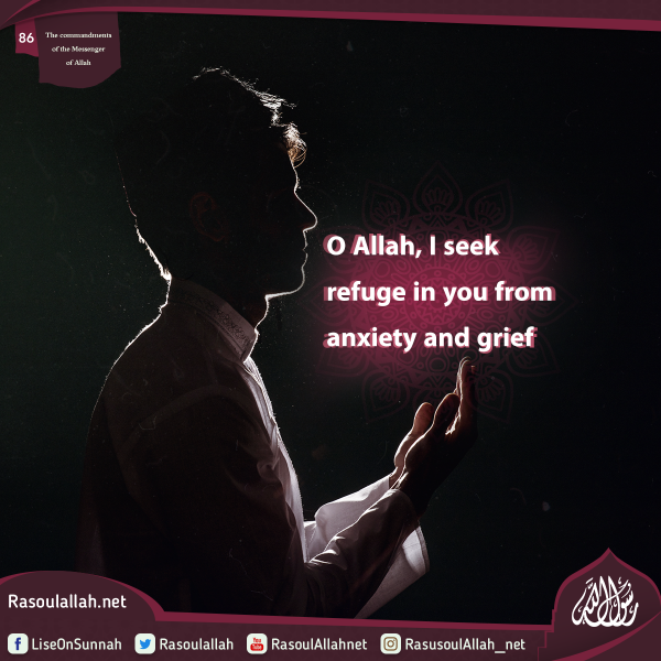 O Allah, I seek refuge in you from anxiety and grief