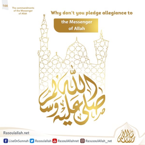 Why don't you pledge allegiance to the Messenger of Allah
