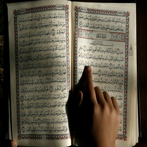 Why Should I Learn About Islam?